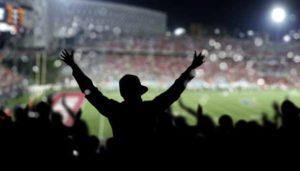 Sports Fan Cheers in Stadium